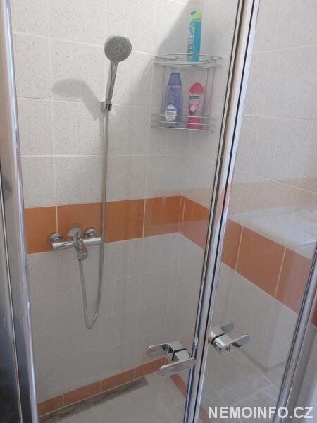 Dveře sprchového koutu